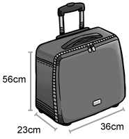 1 cabin baggage