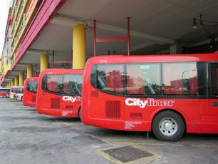 Cityliner buses