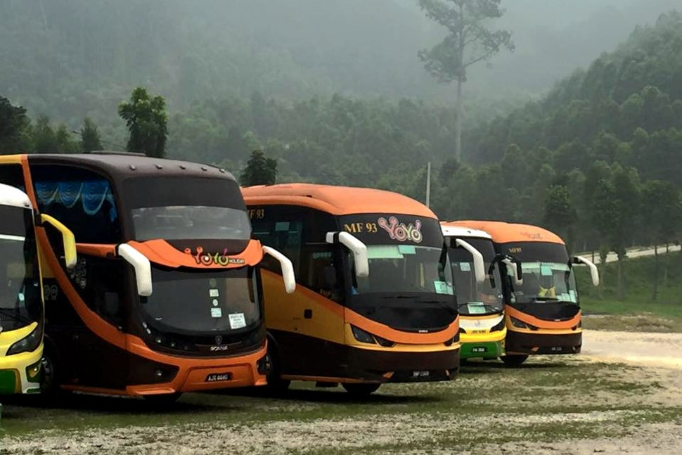 Fleet of YoYo Buses