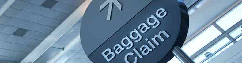 how to add baggage malaysia airlines
