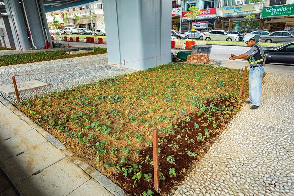 Landscaping and turfing done at the Taman Midah Station. (Mar 2017)