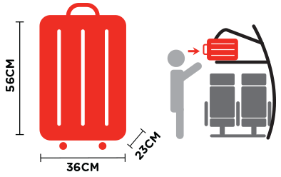 3ab1245060 One cabin bag that can be fit in the overhead compartment