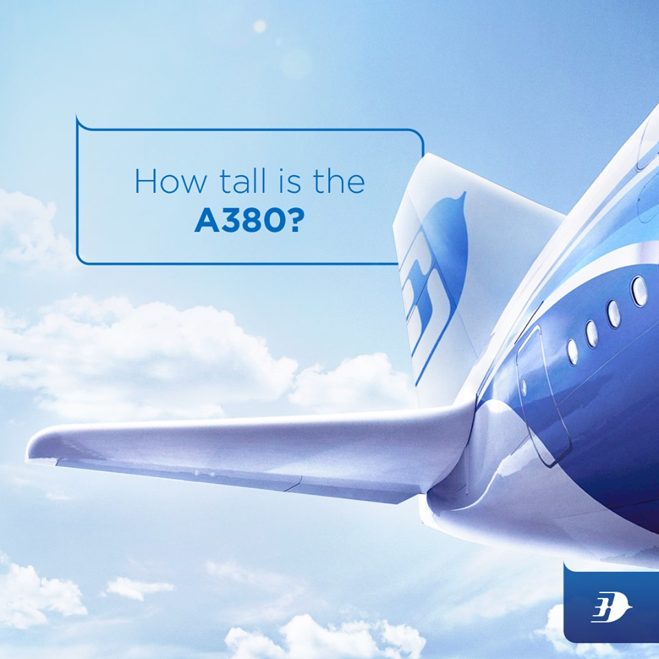 How tall is the A380