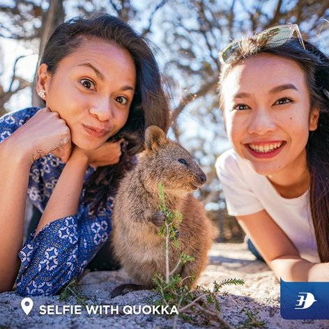 Selfie with Quokka
